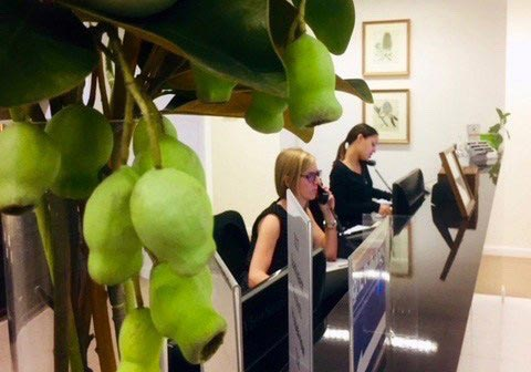 Warm and Friendly Atmosphere at Brisbane doctor clinic